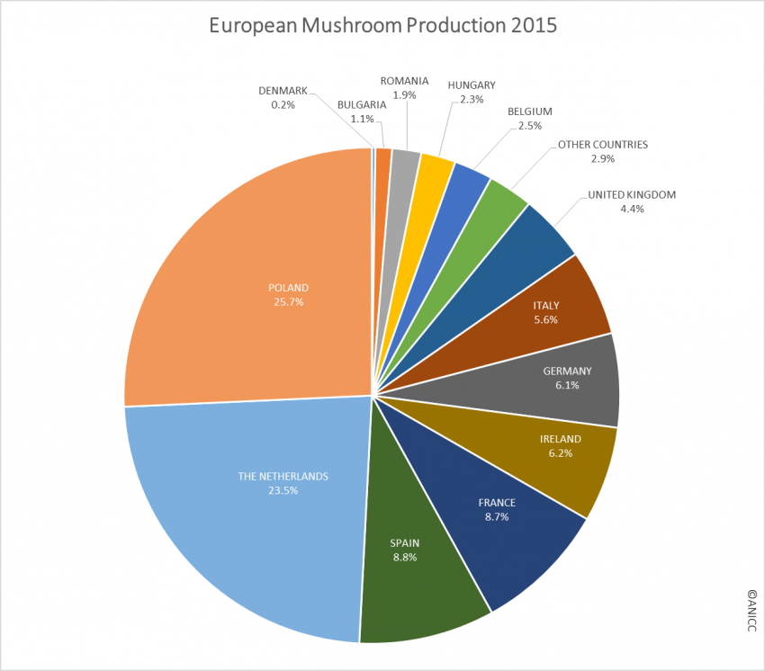 European production 2015