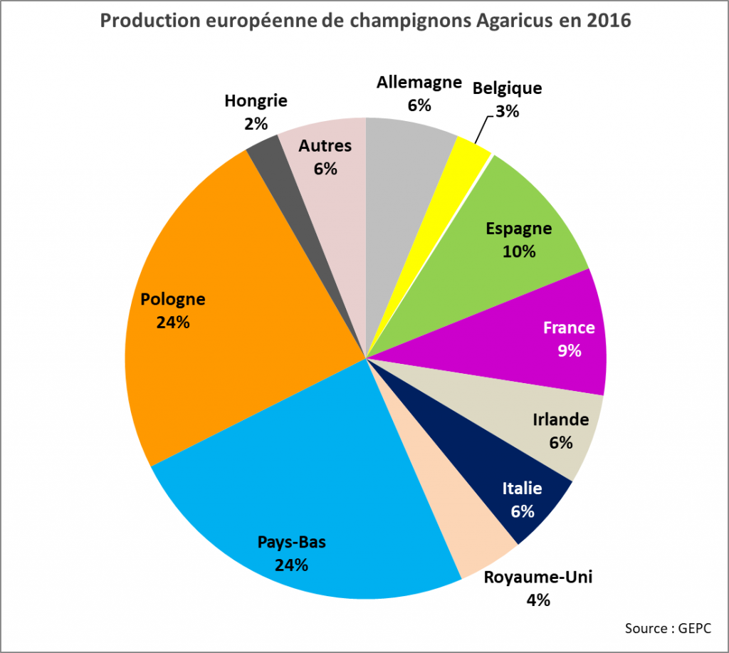 EU production 2016